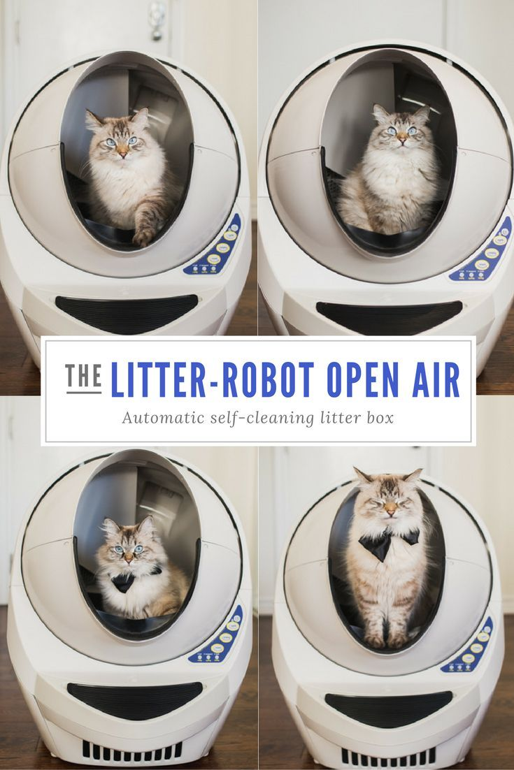 Say hello to the completely reimagined LitterRobot III