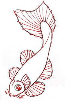 step by step how to draw a koi fish...Outline the shapes, adding details (such as whiskers) as you outline.