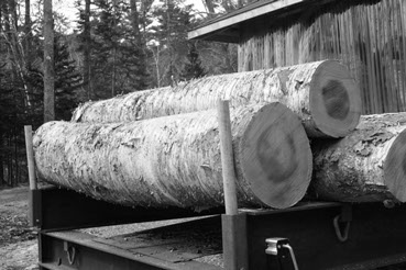 Starting process for Of Maine Wood - they find the logs they then mill.