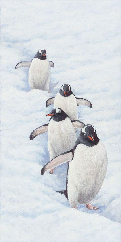 076a5b954361356cc86059ec33abb2a8--gentoo-penguin-penguin-art.jpg