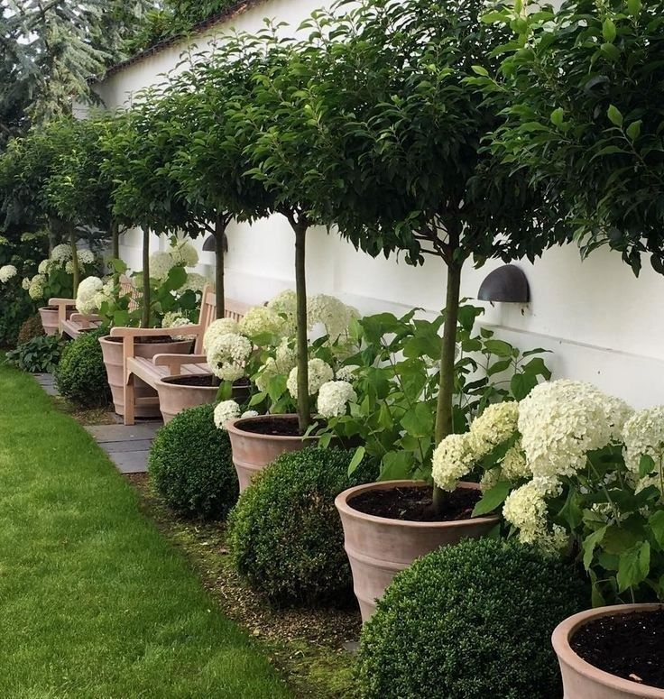 Beautiful Backyards Garden Ideas: 51 Beautiful Small Backyard Fence And Garden Design Ideas