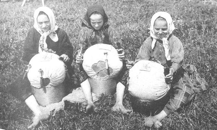Девушки кружевницы за плетением узоров. Московская губ., Дмитровский у., с. Куликово. 1913