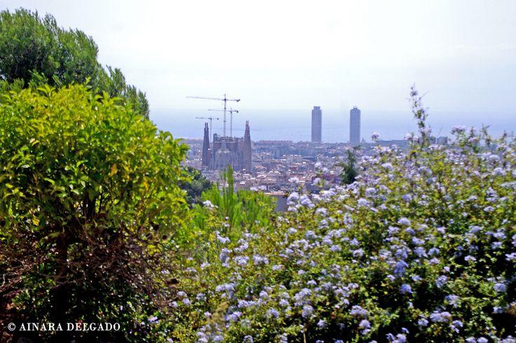 Vistas desde la casa Martí Trias La Sagrada Familia - Parque Güell - Barcelona 13-08-2015