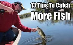 13 Tips To Catch More Fish. The bigger the fish the more food you get, if you can't catch big fish, the more little fish you catch the better.