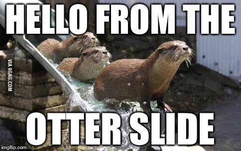 Adele got us screwed | HELLO FROM THE OTTER SLIDE | image ...