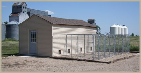 How to build a dog kennel connected to a building for Dog kennel shed combo plans