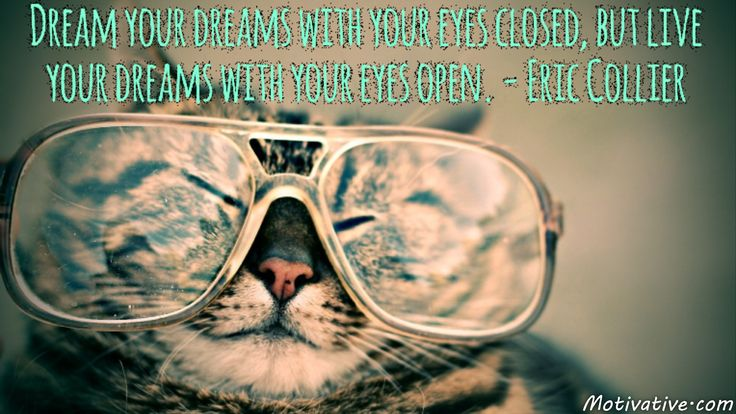 Dream your dreams with your eyes closed, but live your dreams with your eyes open. - Eric Collier -  Dreaming is important because it gives you a quiet time to think about what you want in your life. When your eyes open is the time to start taking action to live your dreams. Change those visionary thoughts into goals & then into reality.