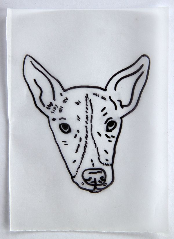 black outline drawing of dog on paper