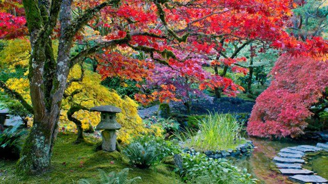 31 best The Color of Nature images on Pinterest | Nature, Beautiful ...