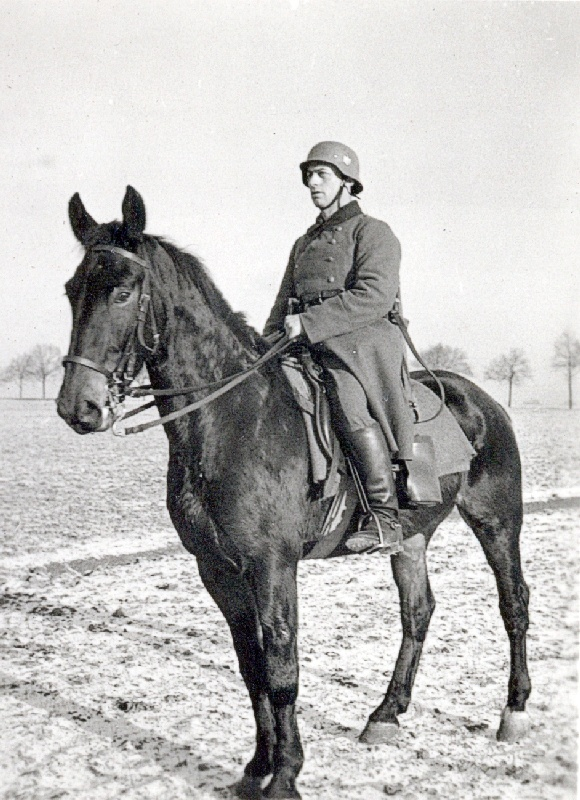 The unsung hero of the German army in WW2 was the horse. When Germany attacked Russia, the horse was still the backbone of the army transport system as Germany never gained an upper hand in providing her land forces with full strength motorized means. A perennial shortage of trucks and other vehicles kept horses in demand and fully deployed throughout the war fronts.