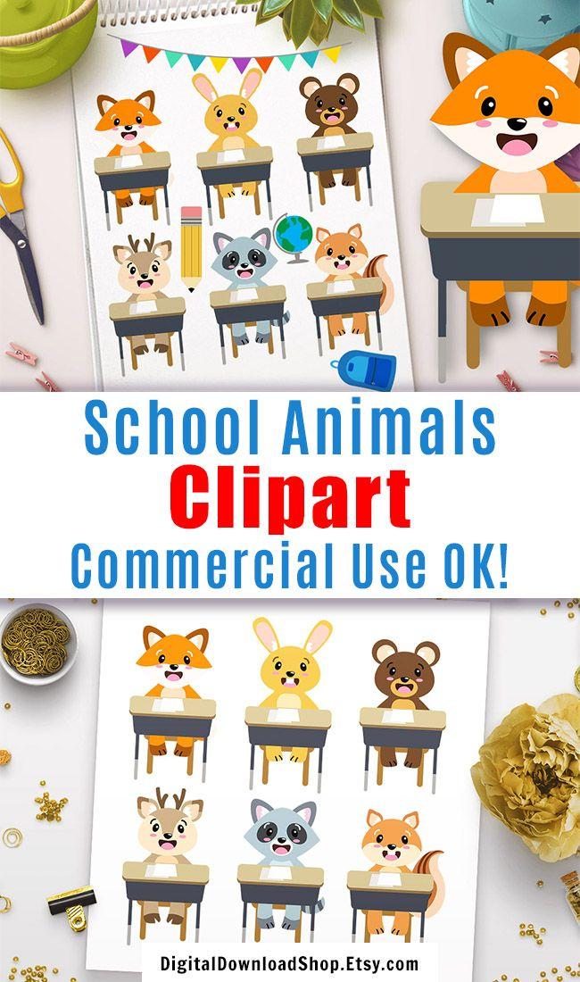 School Animals Clipart Woodland Animals Back To School Etsy Animals Clipart Clip Art Woodland Animals