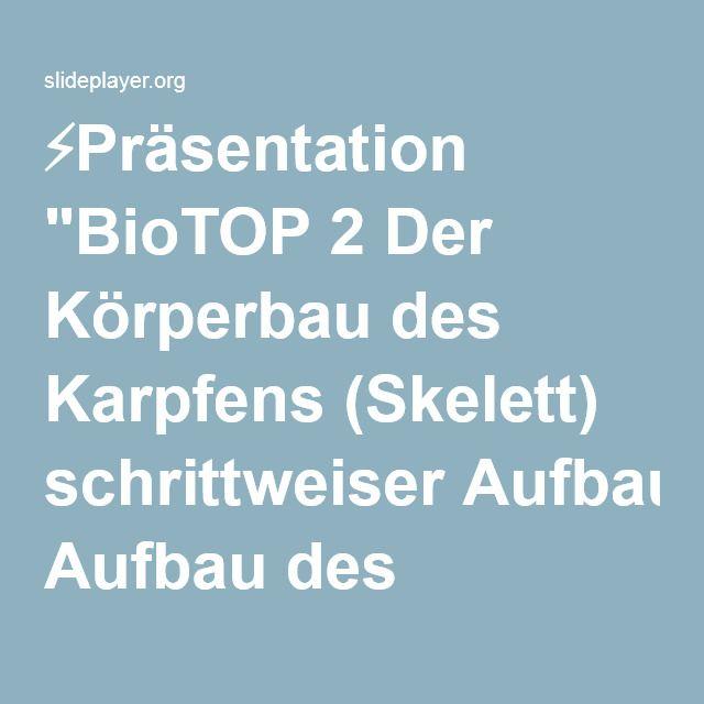 """⚡Präsentation """"BioTOP 2 Der Körperbau des Karpfens (Skelett) schrittweiser Aufbau des Tafelbildes vollständige Ansicht zum Ausfüllen vollständige Ansicht mit Beschriftung."""""""