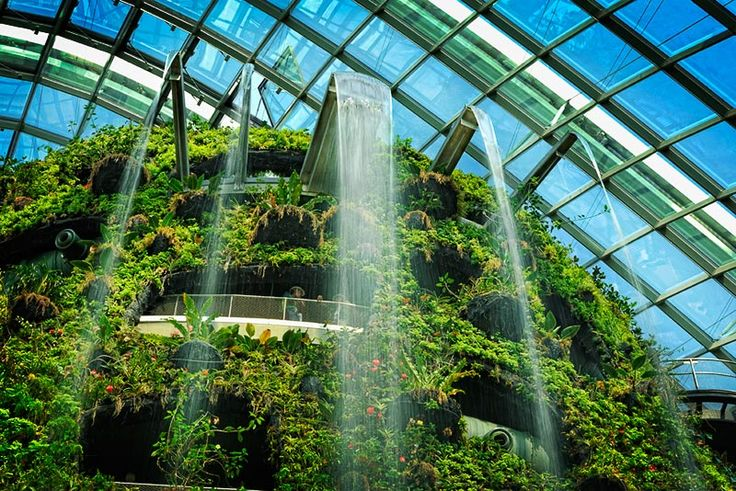 Cloud Forest and Flower Dome Gardens by the Bay | 18 Marina Gardens Drive, Singapore 018953, Singapore $28 per person