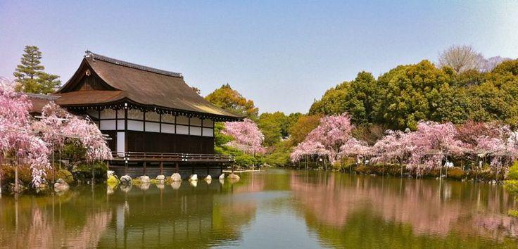 Hanami - Kyoto, Kyoto