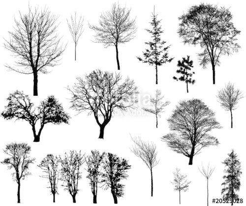 """Téléchargez le fichier vectoriel libre de droits """"Beautiful winter tree silhouettes, highly detailed."""" créé par kitchidk au meilleur prix sur Fotolia.com. Parcourez notre banque d'images en ligne et trouvez l'illustration parfaite pour vos projets marketing !"""