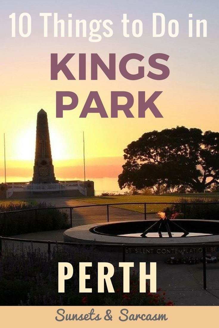 Looking for things to do in Perth, Australia? Read my guide on the beautiful Kings Park. With Botanic Gardens, walking trails and spectacular views across Perth city and the Swan River (especially to enjoy the Perth sunrise or sunset), a visit to Kings Park is a must-do on your trip to Perth. Find out all that Kings Park has to offer and make the most of your visit to Western Australia.