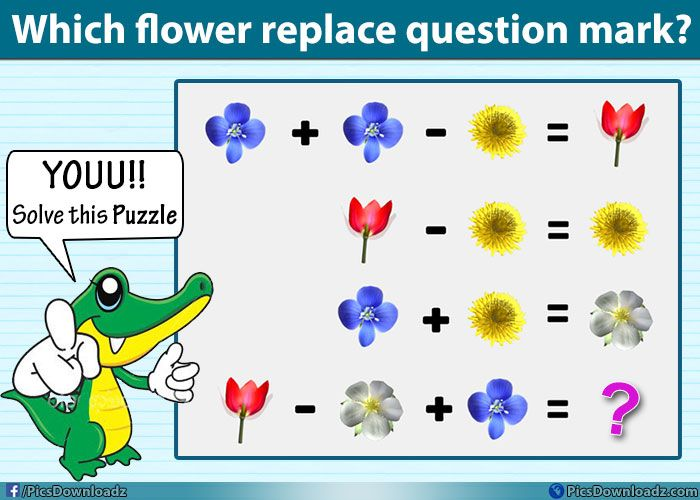 Which flower replace the question mark?? Solve this genius puzzle image