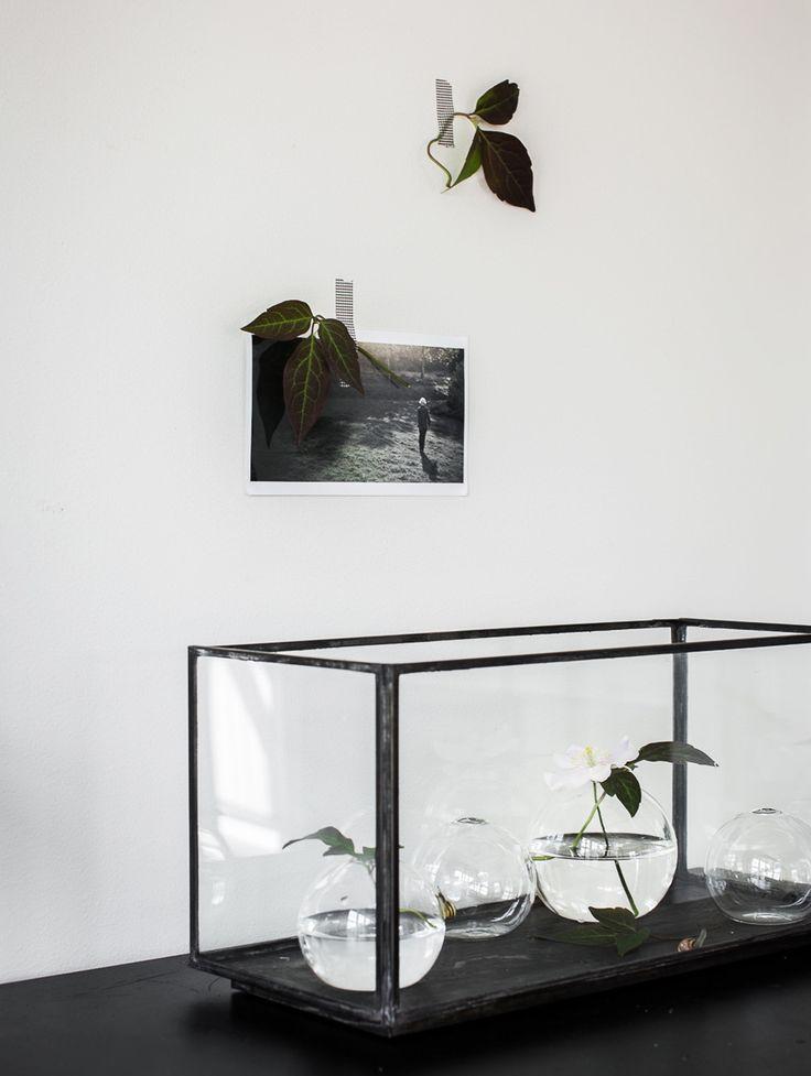 Daniella-Witte-Vasstilleben-i-glaskub.jpg (1000×1328)