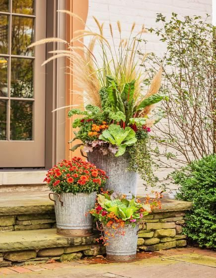 Top 379 ideas about fall containers on pinterest window boxes fall flowers and kale - Potted autumn flowers ...
