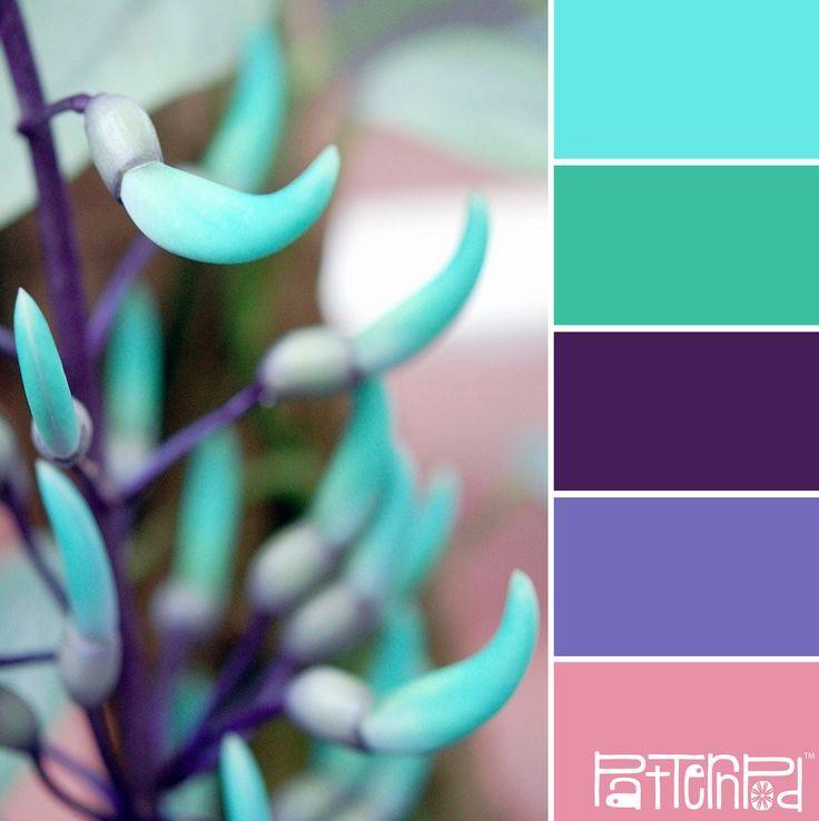 52 Besten Wandfarbe Mint Salbei Bilder Auf Pinterest: 2583 Besten Farbpalette Bilder Auf Pinterest