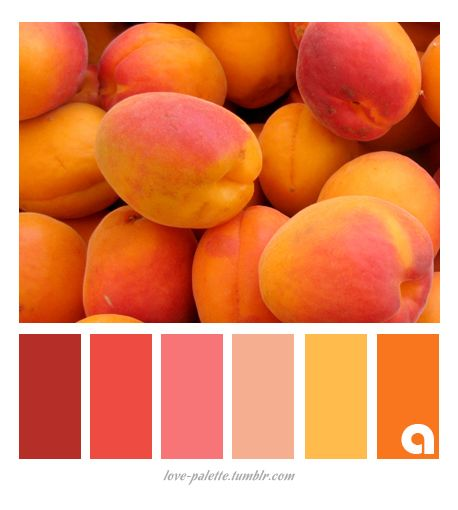 Decorating With Colors Mango: Best 25+ Orange Paint Colors Ideas On Pinterest