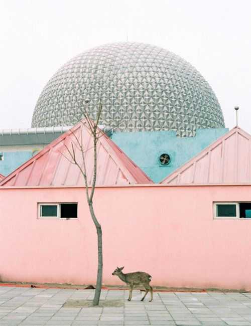Greenhouse Aesthetic Pink