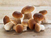 Pilzarten auf einen Blick | EAT SMARTER