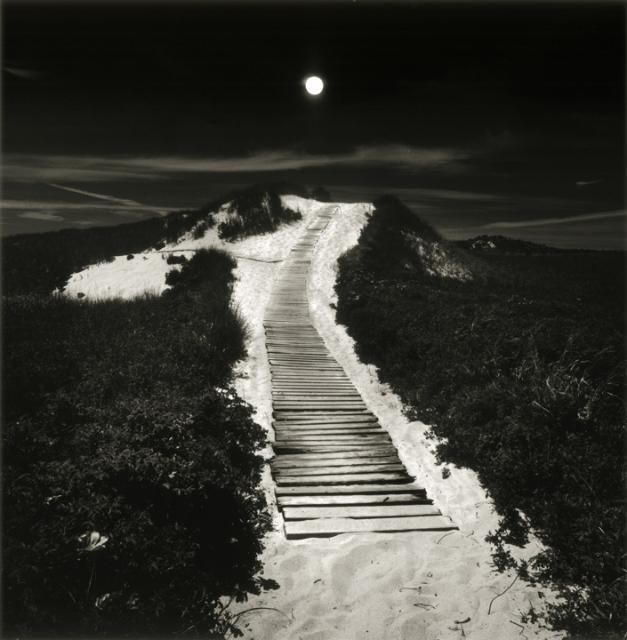 Moonlit Path to the Beach - Lisa Tyson Ennis