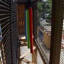 Atelier snake dans l'Acro'Brik Haut avec frites suspendues.