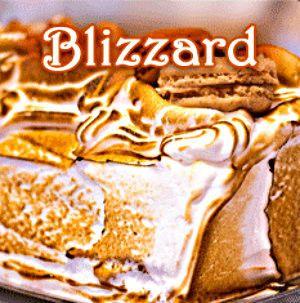 Blizzard Flavored Coffee – 2DogJava.com