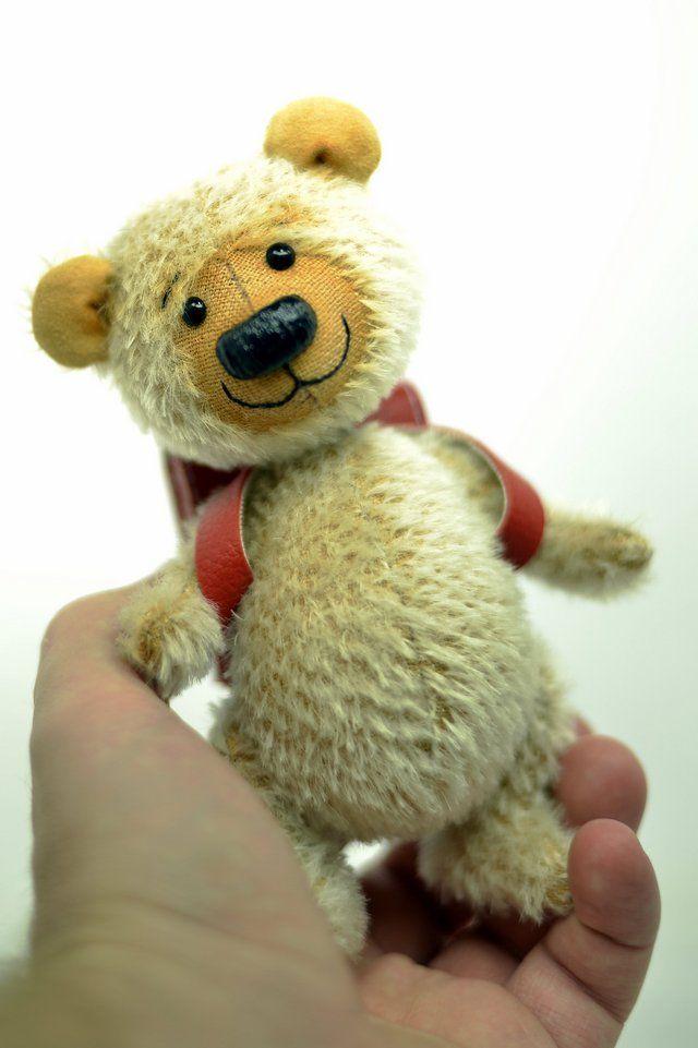 Medvídek Školák