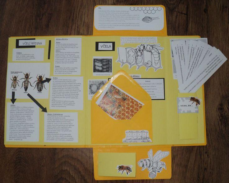 Včely - lapbook 2. část
