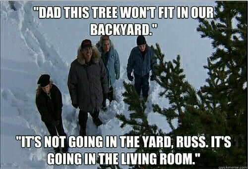 National Lampoon's Christmas Vacation Quotes 7 Best Christmas Vacation Quotes Images On Pinterest  Christmas