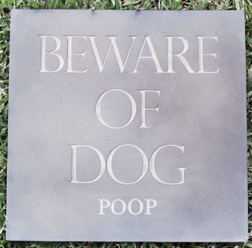 Beware of dog poop   ...........click here to find out more     http://googydog.com