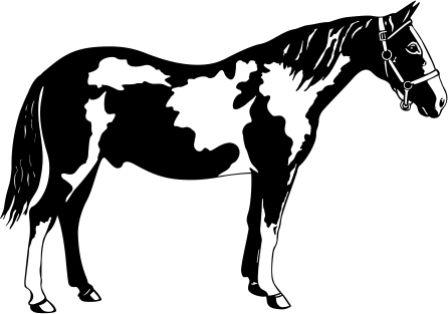Силуэт лошади AK