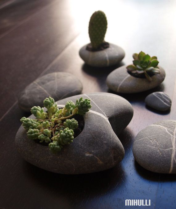 hand engraved beach stone flower planter home decor zen by Mihulli, www.mihulli.com https://www.etsy.com/shop/Mihulli