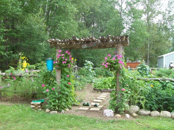 amazing rustic garden