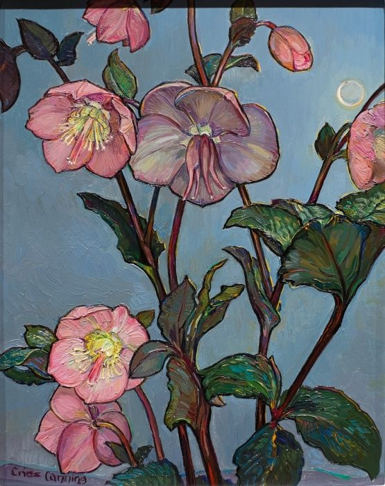 Criss Canning - Hellebores with Night Sky