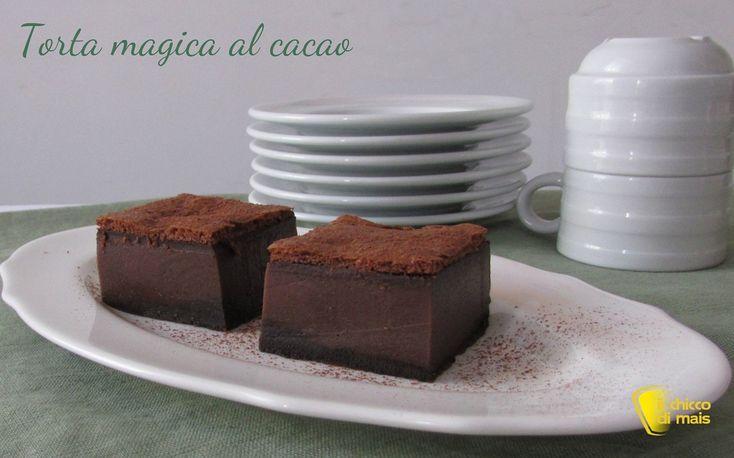 Torta magica al cacao (ricetta anche senza glutine). Ricetta con foto passo passo della torta magica al cioccolato con consigli per ottenere i tre strati