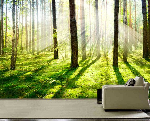 Morning forest Fog wall mural, wall decal, repositionable peel & stick wall paper, wall covering $425
