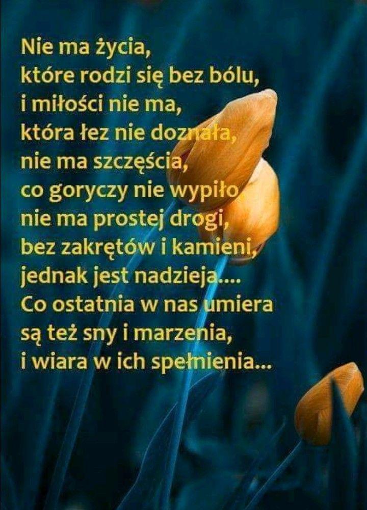 Pin By Gosia Kuzminska On Piekne Mysli I Slowa Motto Motivation Quotes