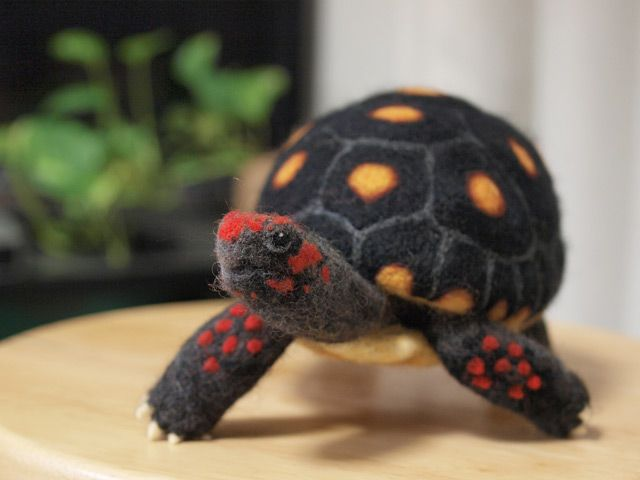 felted turtle with embroidery