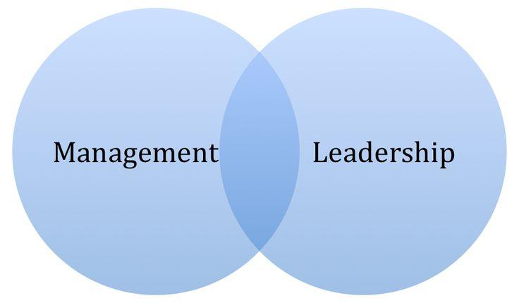 Victor Ciobanu: Diferențe între leadership și management