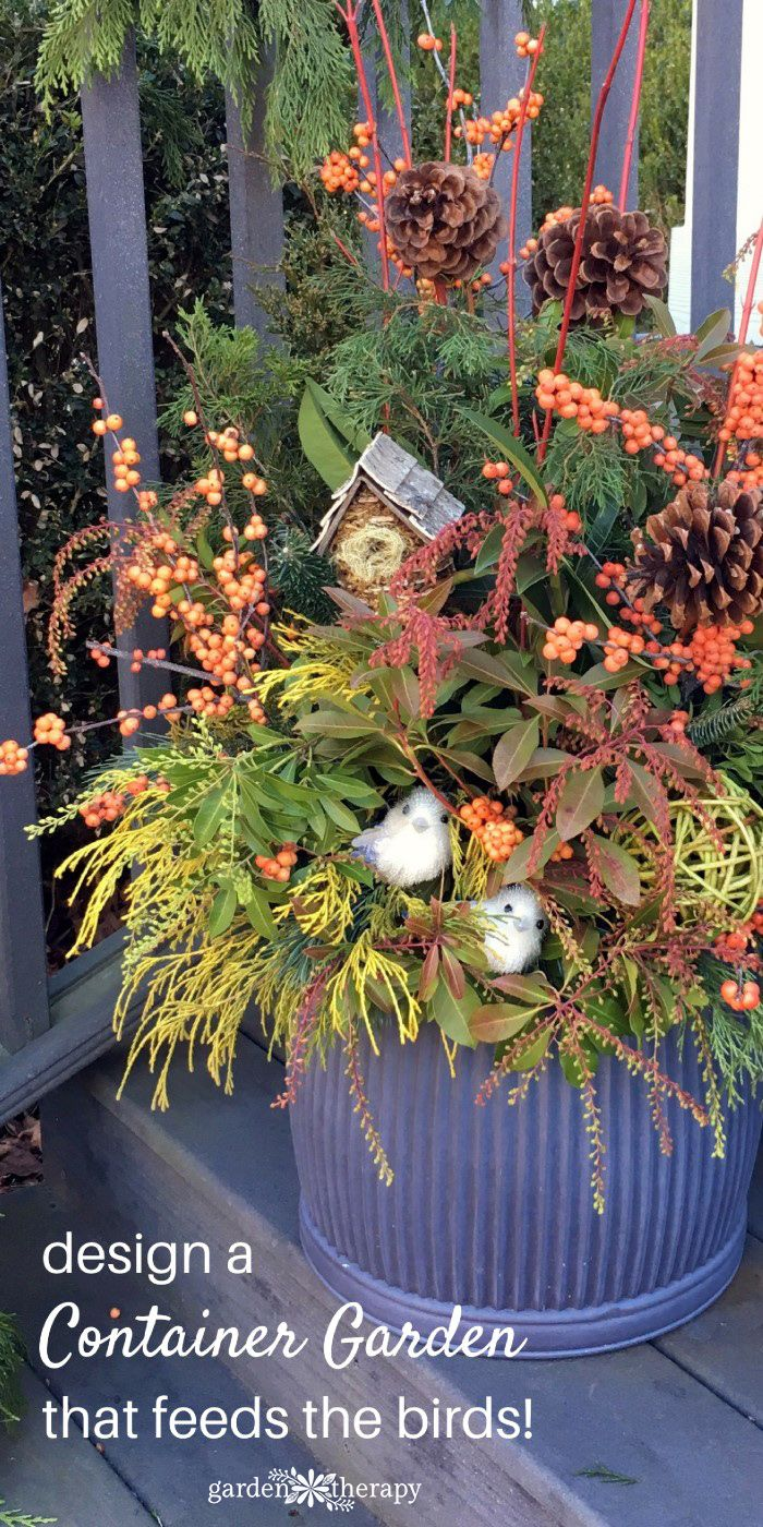 40 best container gardening images on pinterest gardening