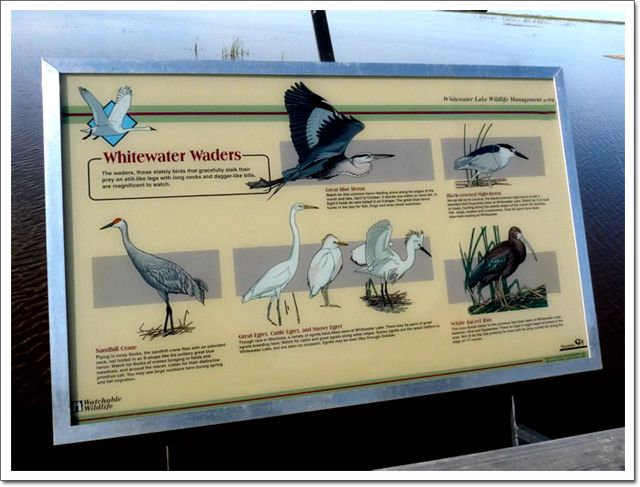 Whitewater Lake Wader's Sign