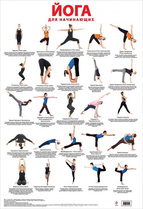 йога упражнения для начинающих фото: 14 тыс изображений найдено в Яндекс.Картинках