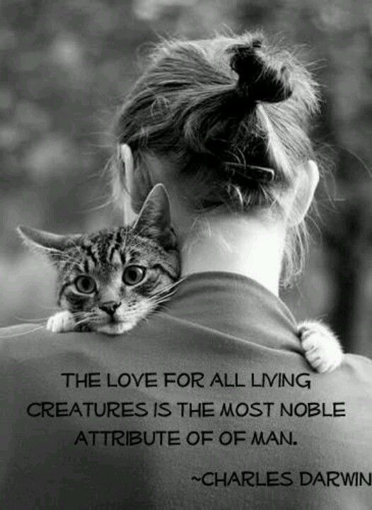 """""""The love for all living creatures is the most noble attribute of man.""""  ~Charles Darwin"""