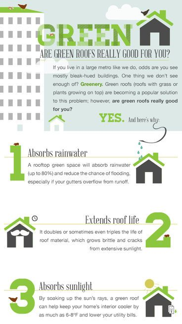 Why Go With A Green Roof? This Infographic Calculates Costs Versus Benefit  And Gives Tips