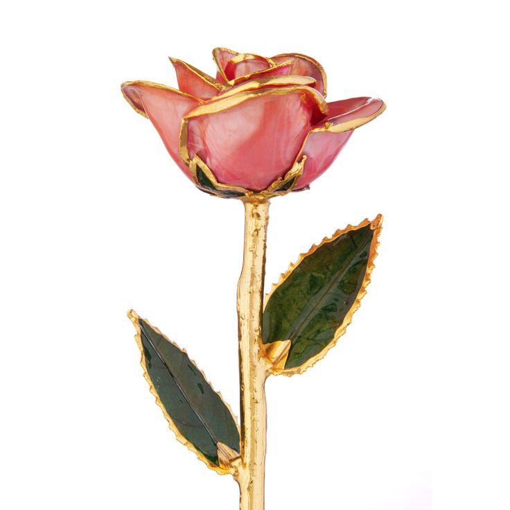 Sweetheart Pink 24k Gold Dipped Rose Steven Singer