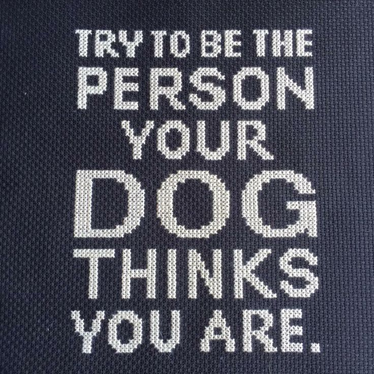 Try To Be The Person Your Dog Thinks You Are